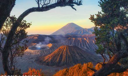 AON | Trip Fotografi ke Gunung Bromo